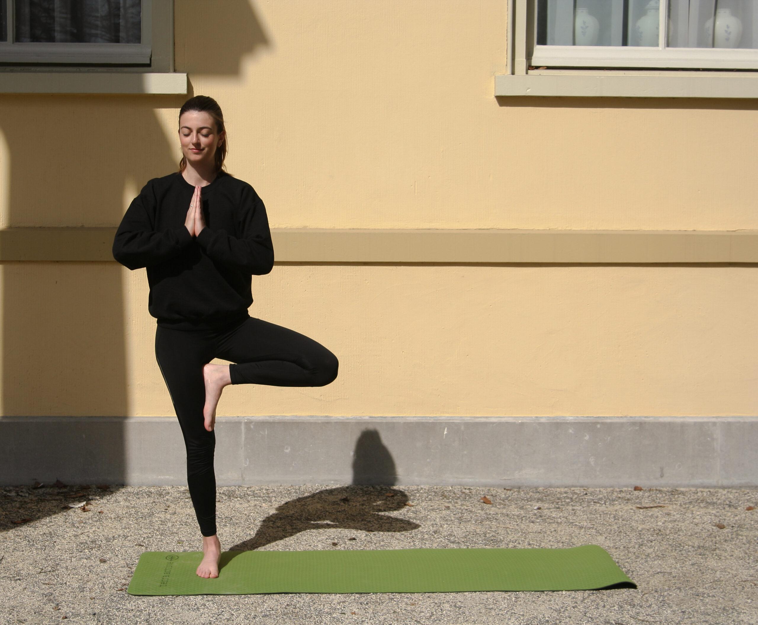 terra active yogamat